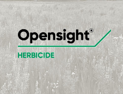 Opensight Herbicide To Control Mixed Stands Of Invasive Weeds