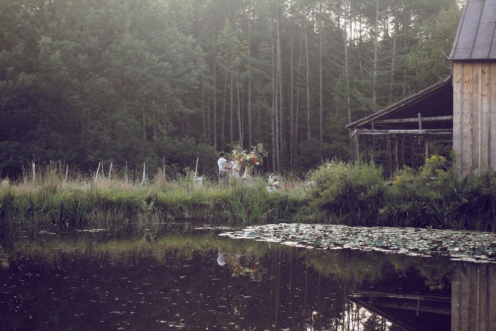 from pond.jpg