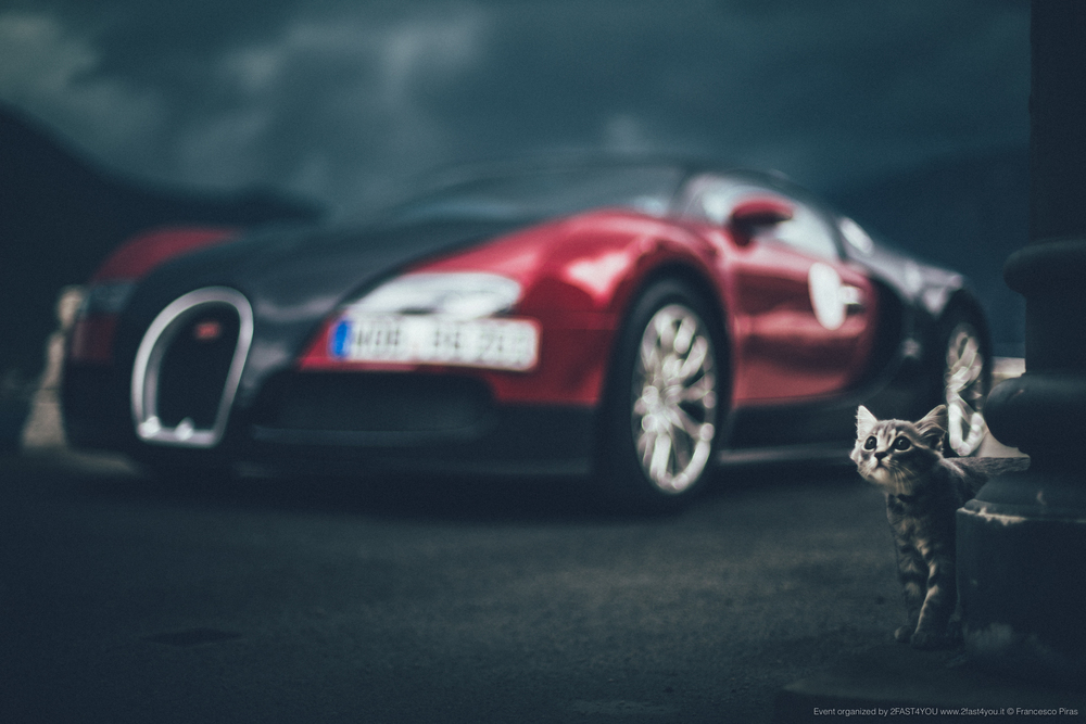 BugattiGT2015_highres_IMG_1561.jpg