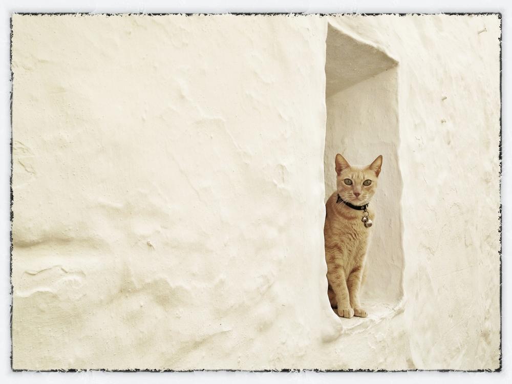 'Watching you watching me' - Spain