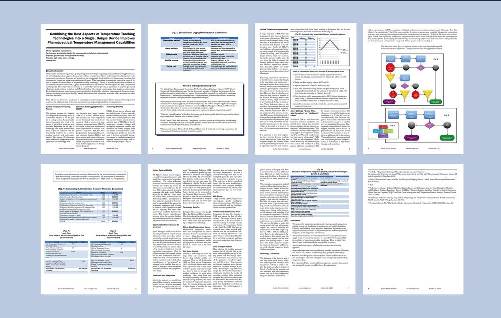 Berlinger White Paper