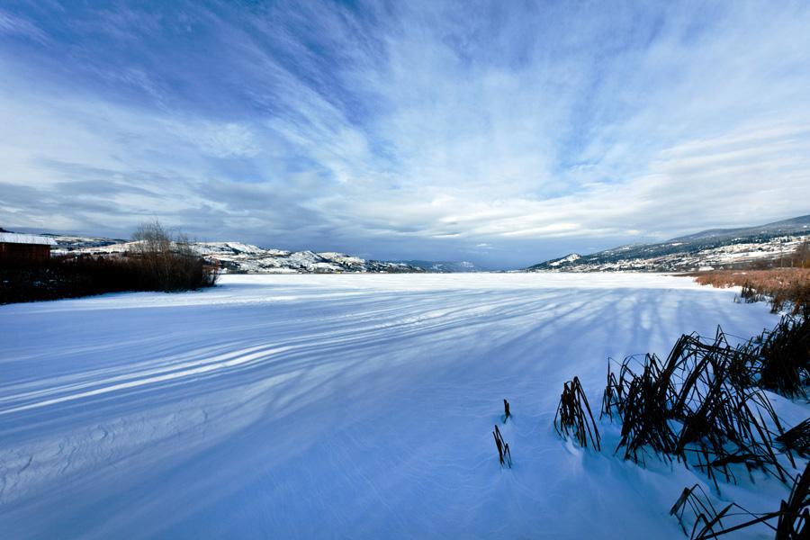 vernon_winter2_900.jpg