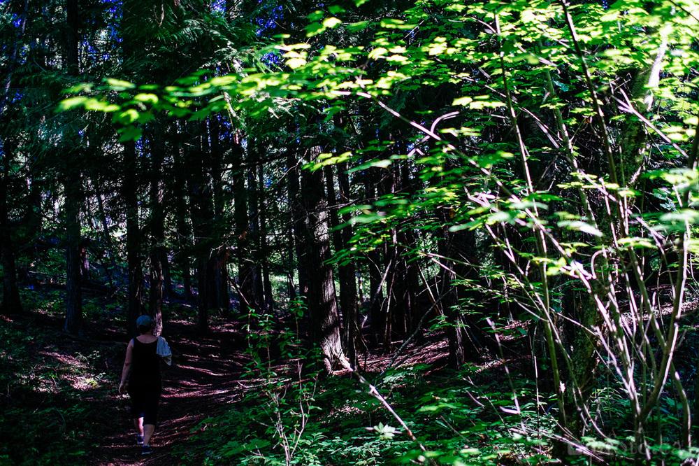 rose-swanson-hike-3114.jpg