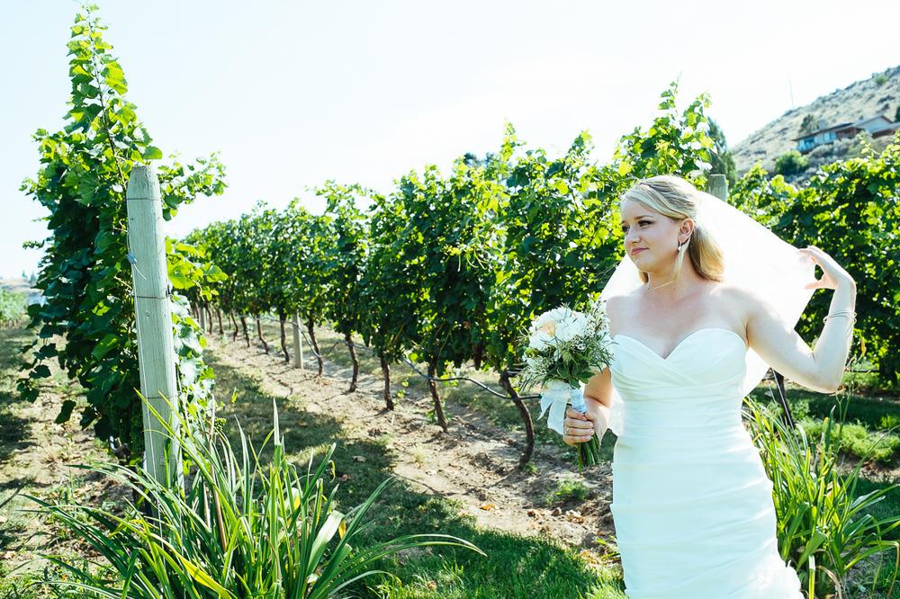 dayna-lynn-cameron-wedding-7238.jpg