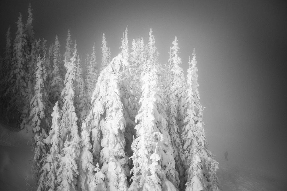 ski-xpro-nd-1093_1250.jpg
