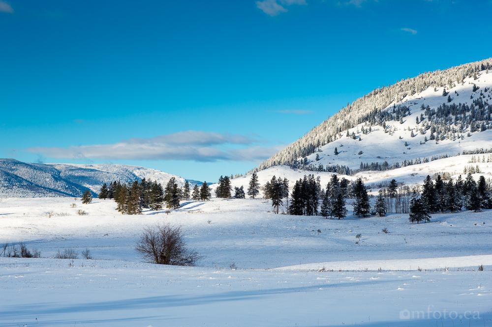 2015-winter-8987.jpg
