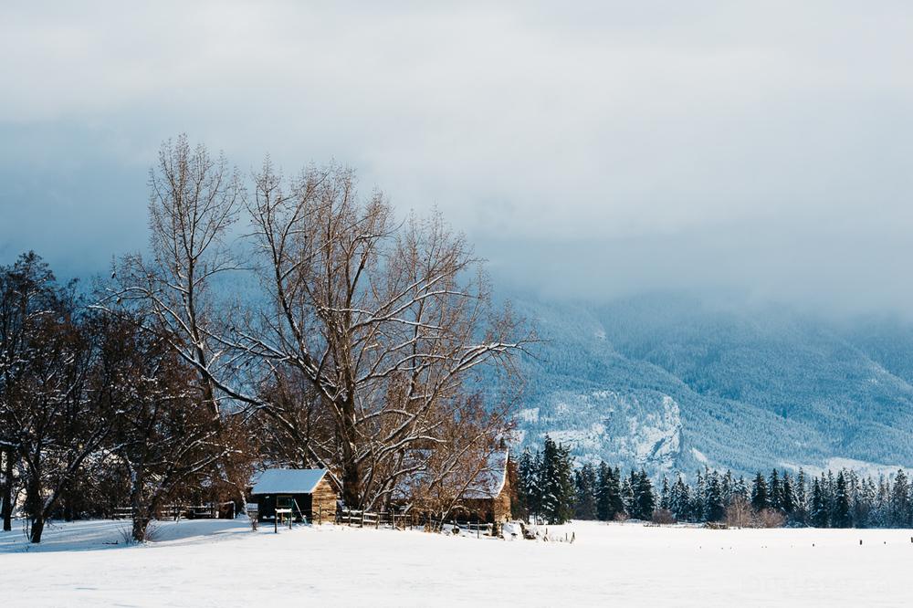 2015-winter-9018.jpg
