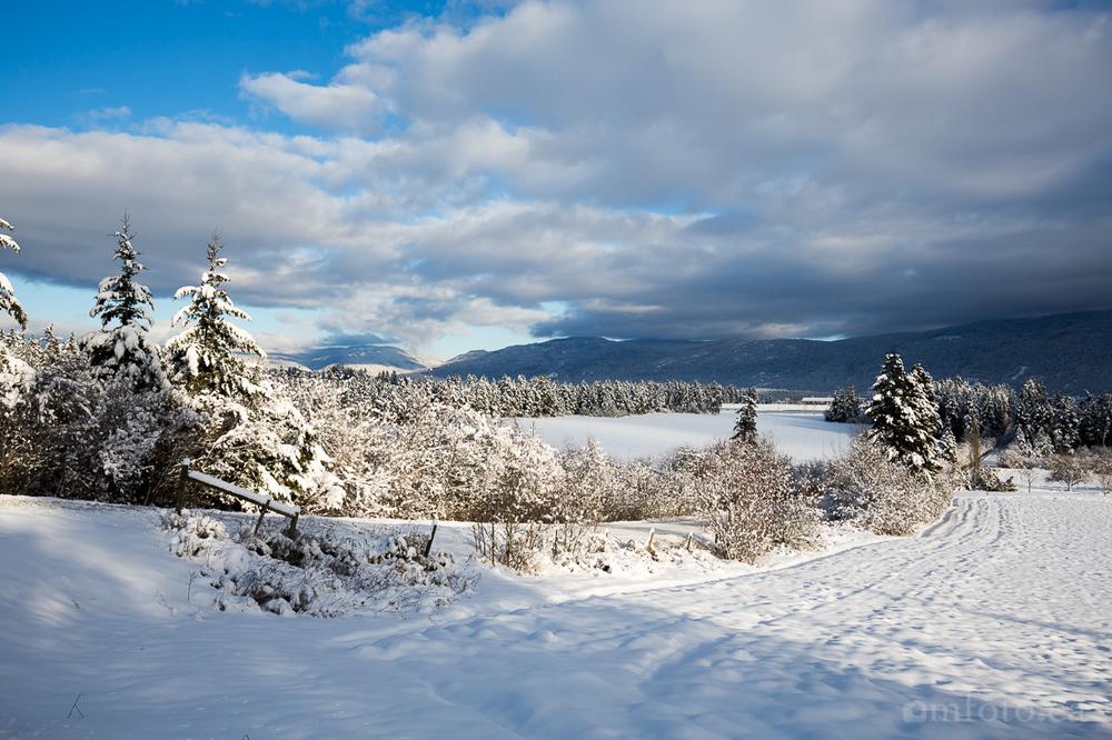 2015-winter-9027.jpg