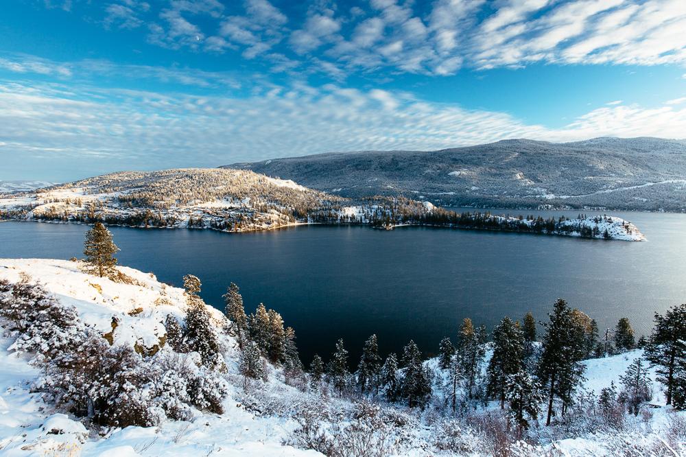 2015-winter-9086.jpg
