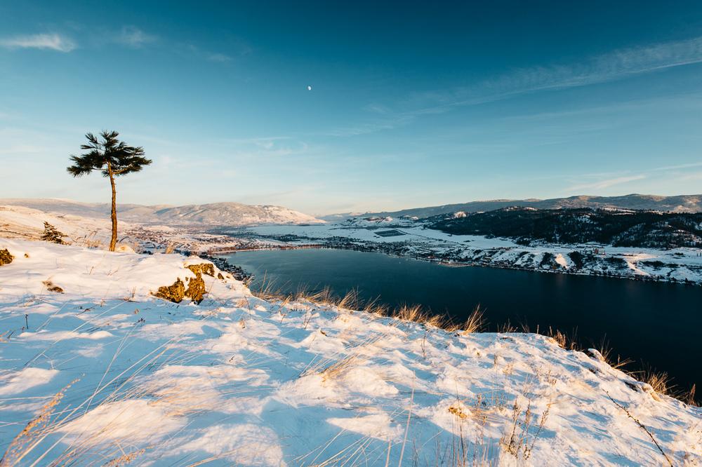 2015-winter-9152.jpg