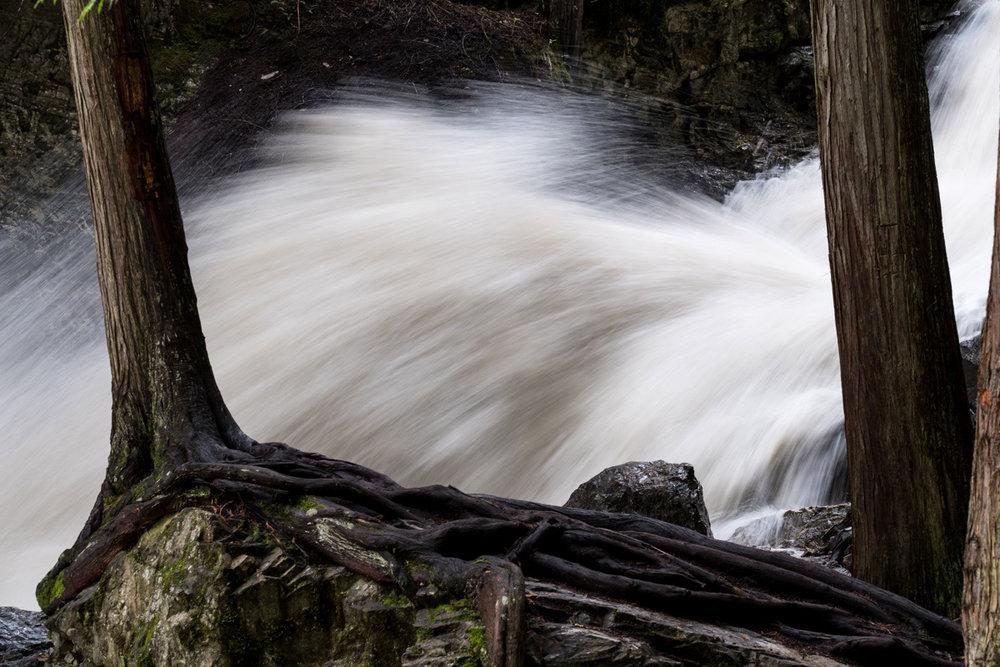 bx_creek-9529.jpg