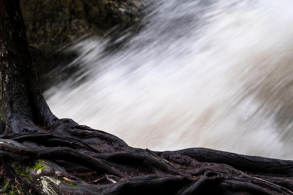 bx_creek-9542.jpg