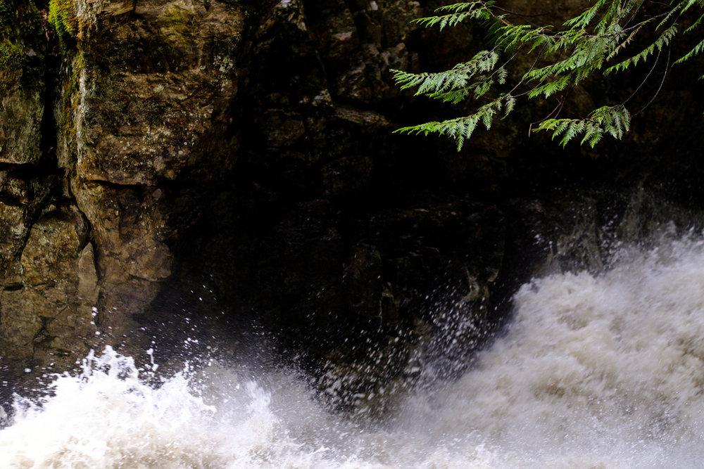 bx_creek-9539.jpg
