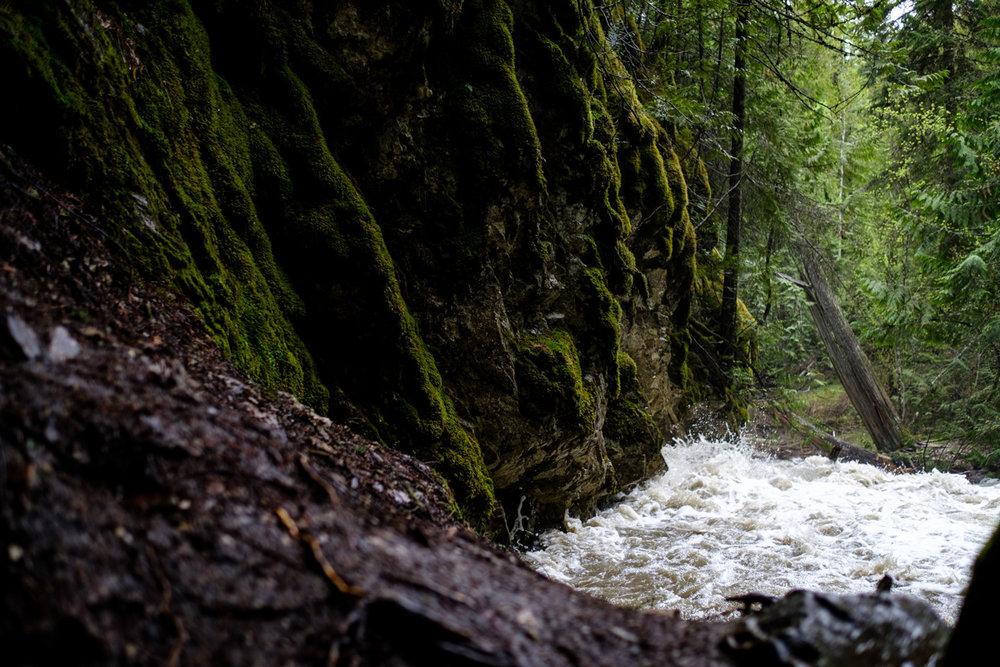bx_creek-9599.jpg
