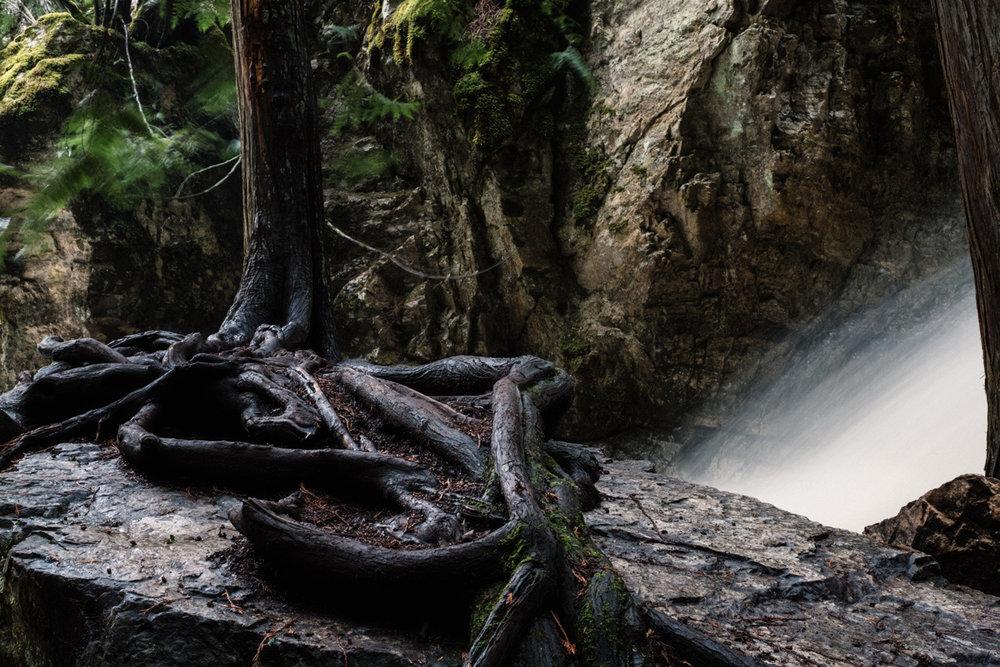 bx_creek-9616.jpg