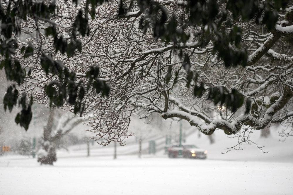 DSCF0075vancouver_snow_day.jpg