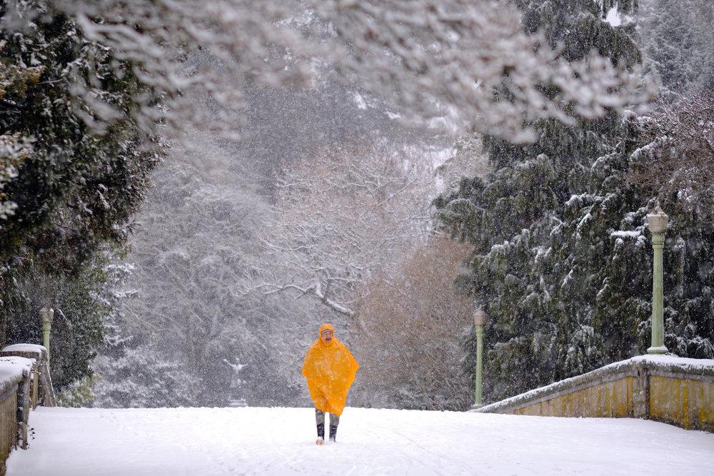 DSCF0078vancouver_snow_day.jpg