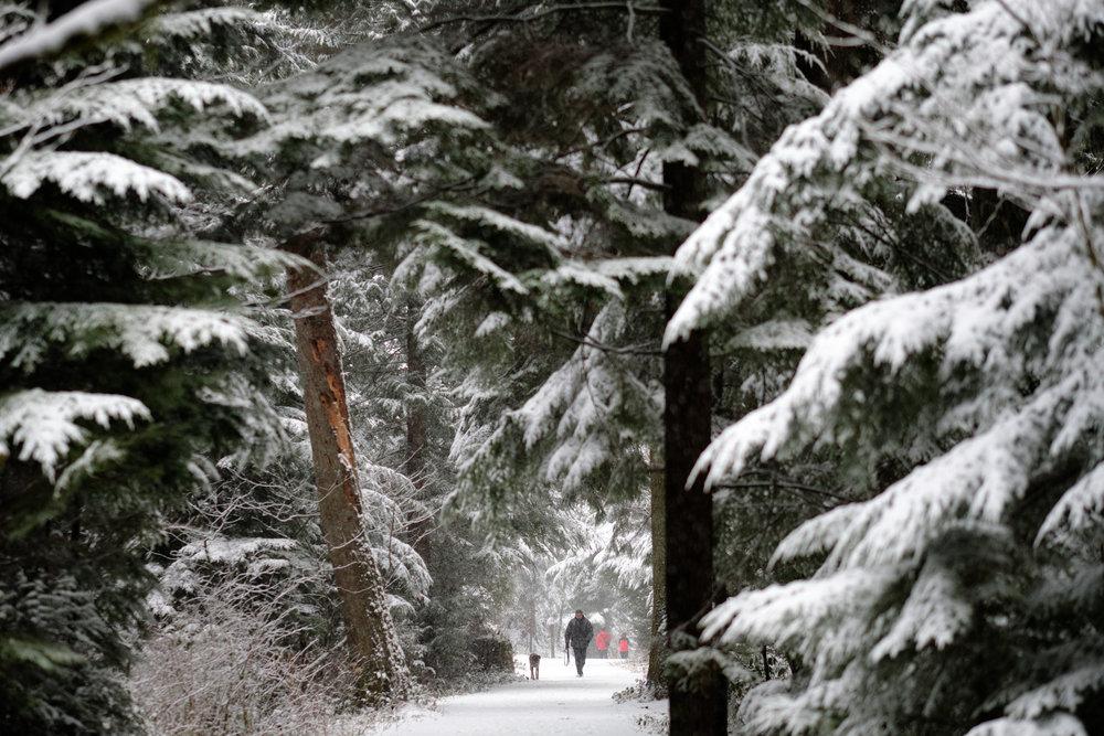 DSCF0131vancouver_snow_day.jpg