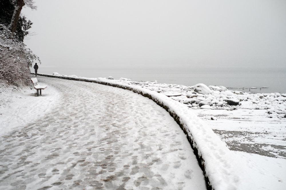 DSCF0151vancouver_snow_day.jpg