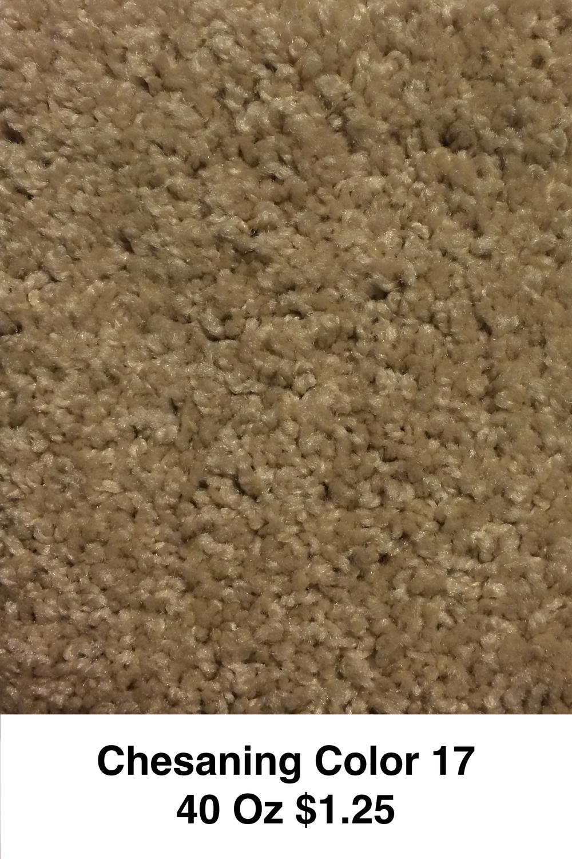 Chesaning 1.jpg