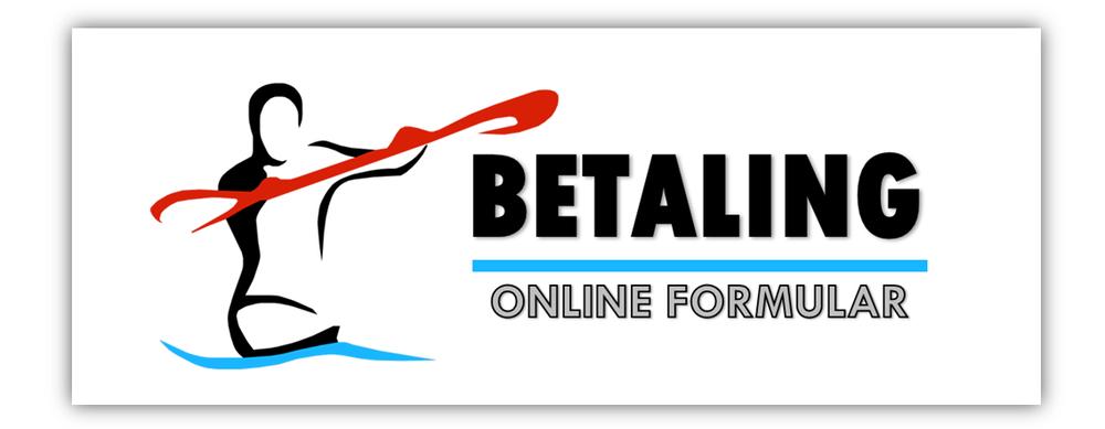 Betaling i online formular3.png