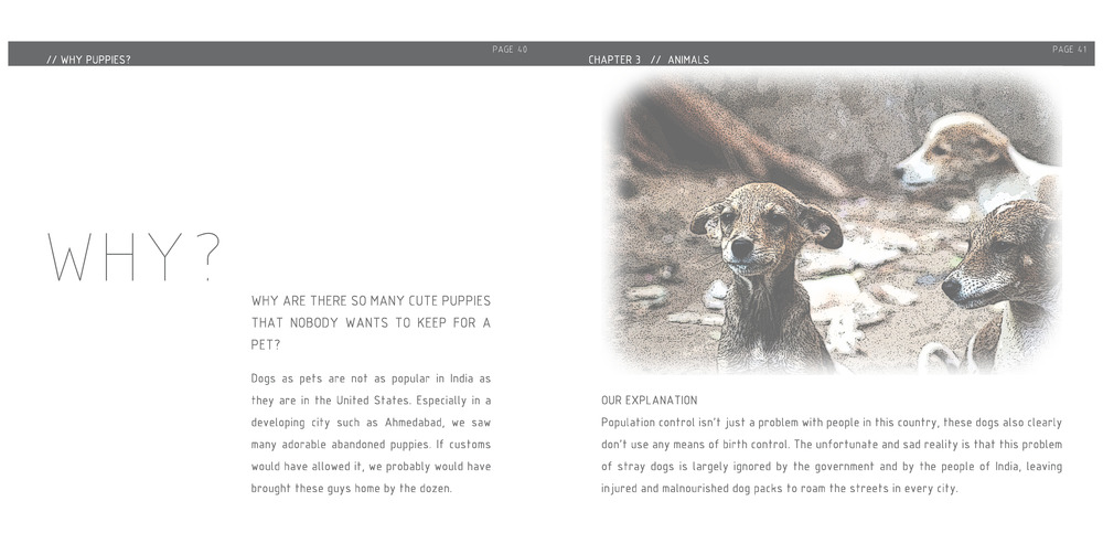 WHY BOOK_Zoe Demple+Madeleine Kotuiga_Page_21.jpg