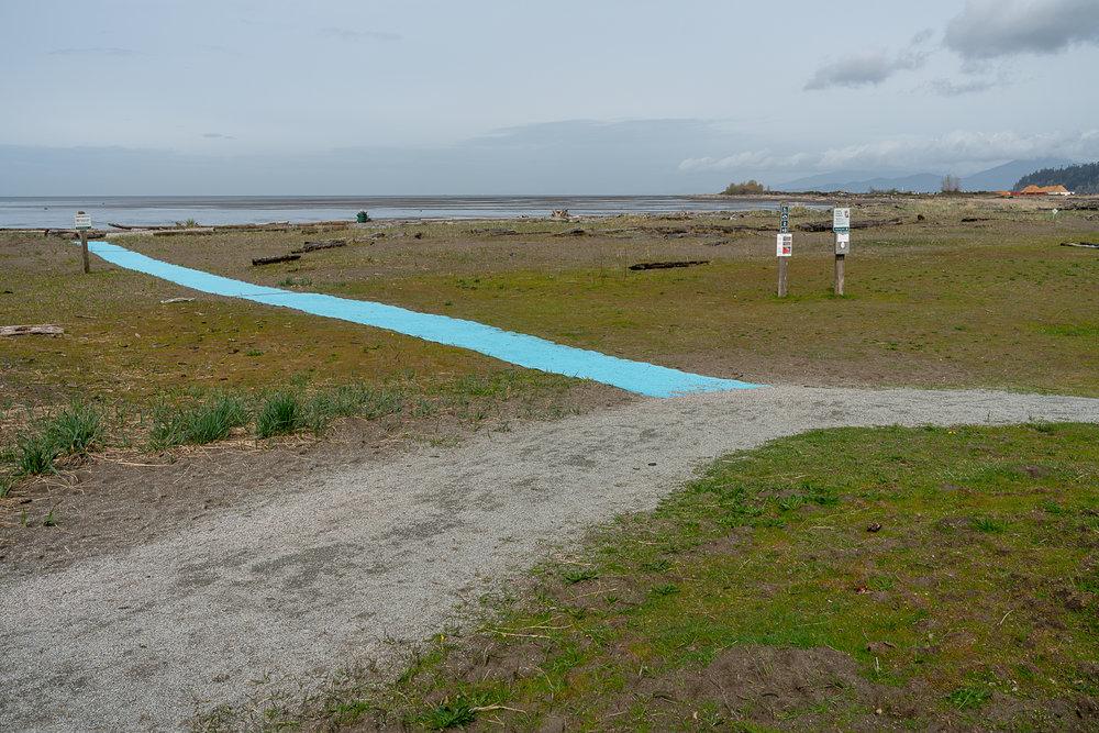 Jim-Roche-photo-Island-9905.jpg