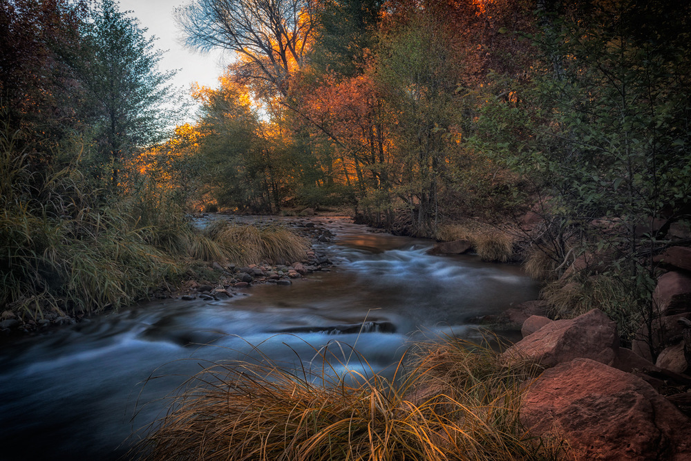 Phoenix Photographer Nathan Brummer Photography DSC_6876.jpg