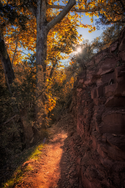 Phoenix Photographer Nathan Brummer Photography DSC_6802.jpg
