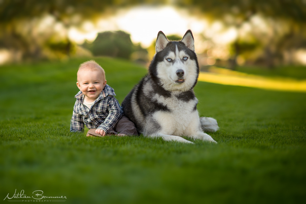 Phoenix Family Photography nathan brummer photography lucas.jpg