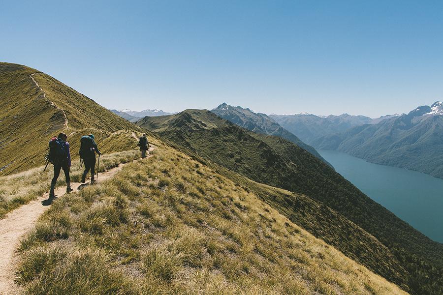 Trade LXX | New Zealand | De Cosse Brissac Family