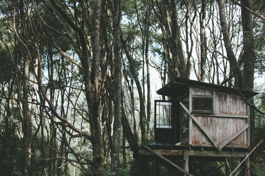 Trade CLII | Australia | A Festival Called PANAMA