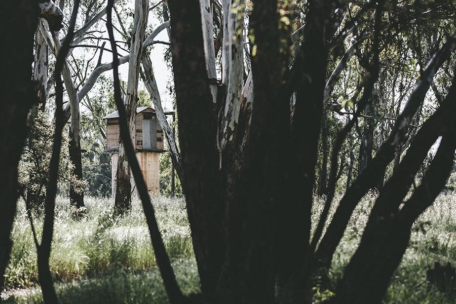 Trade CCXXI | Australia | Rutherglen Tourism