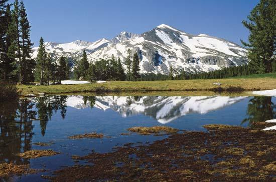 Mount Dana - Yosemite National Park