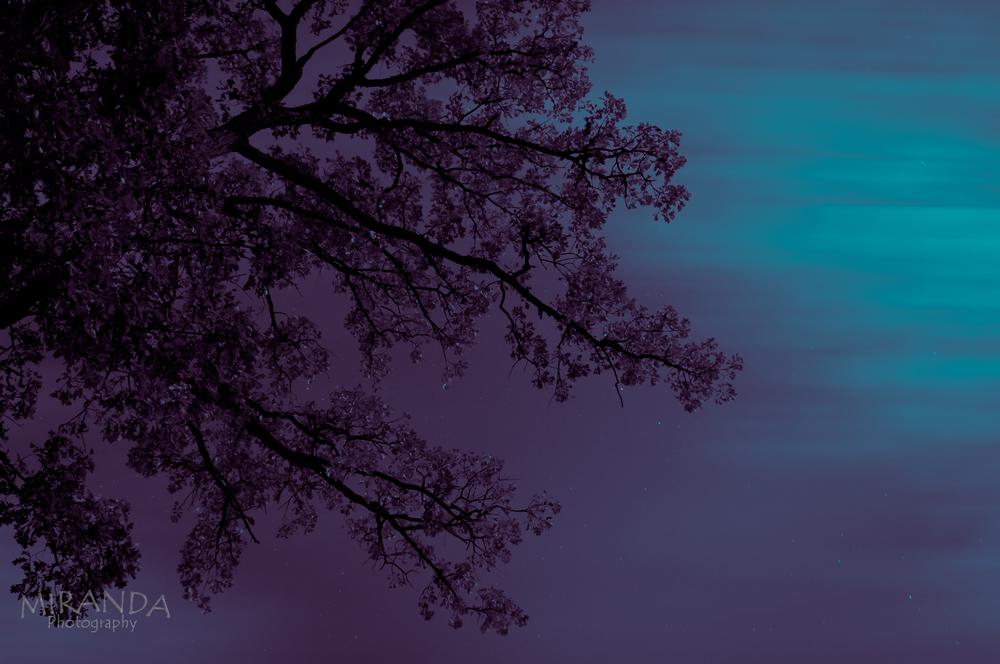 Moon-13.jpg