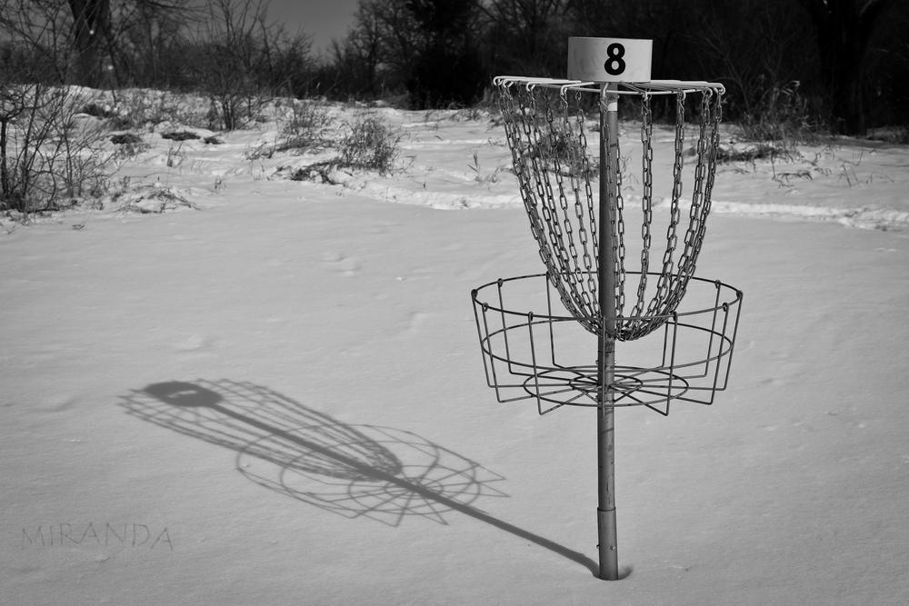Frisbee-Golf-Cary-Illinois