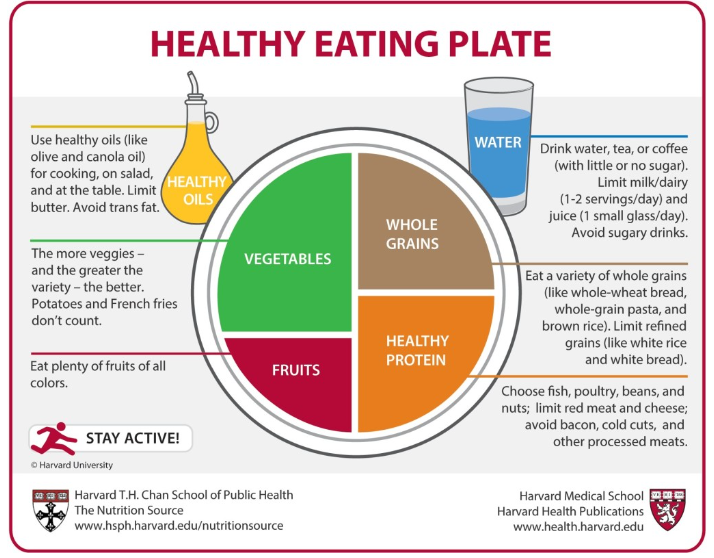 Healthy plate.PNG