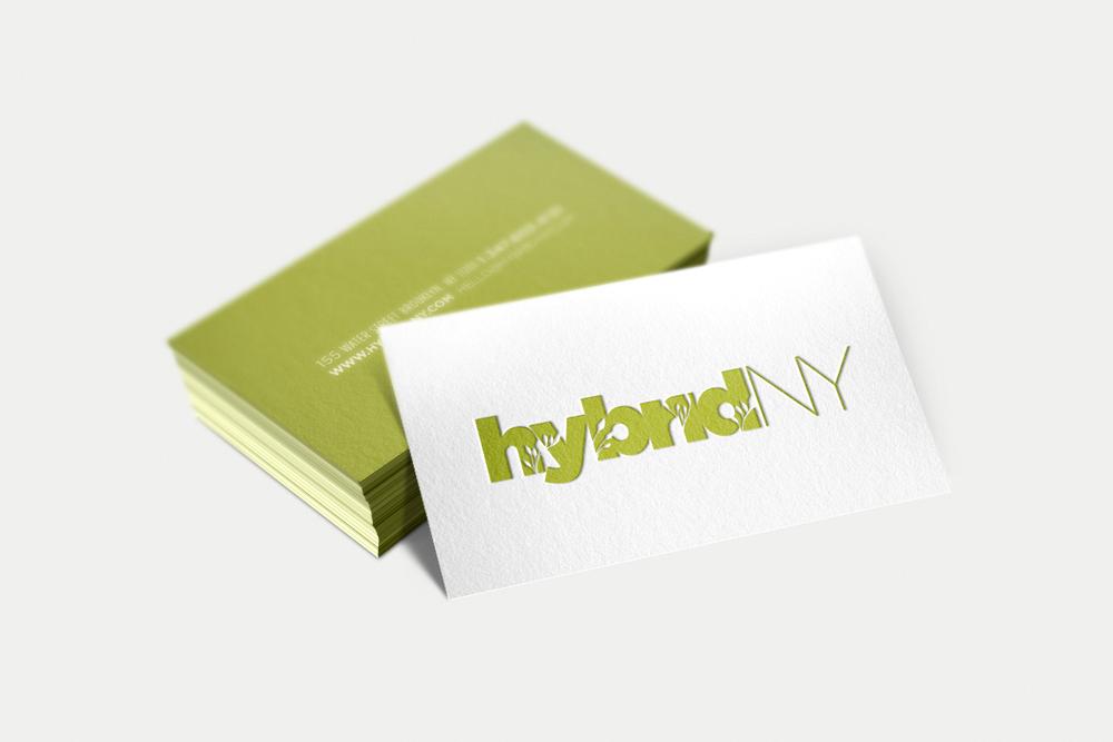 hybridNY_1.jpg