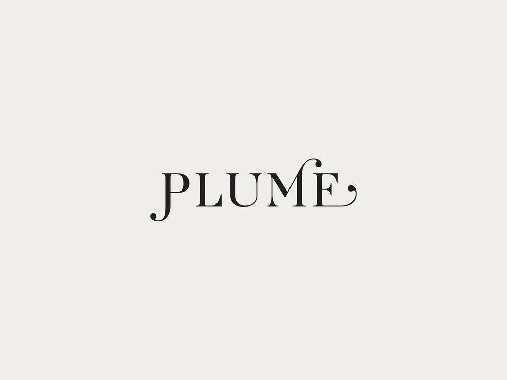 plume01.jpg