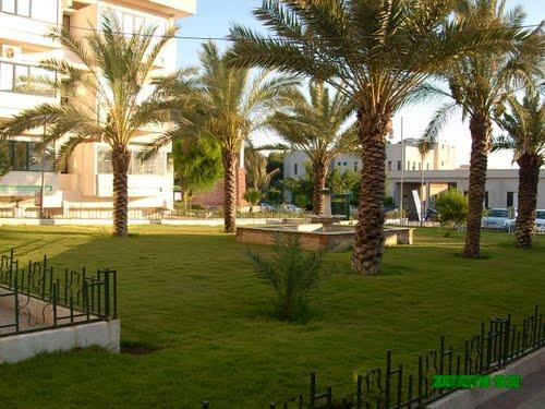 academy libya.jpg