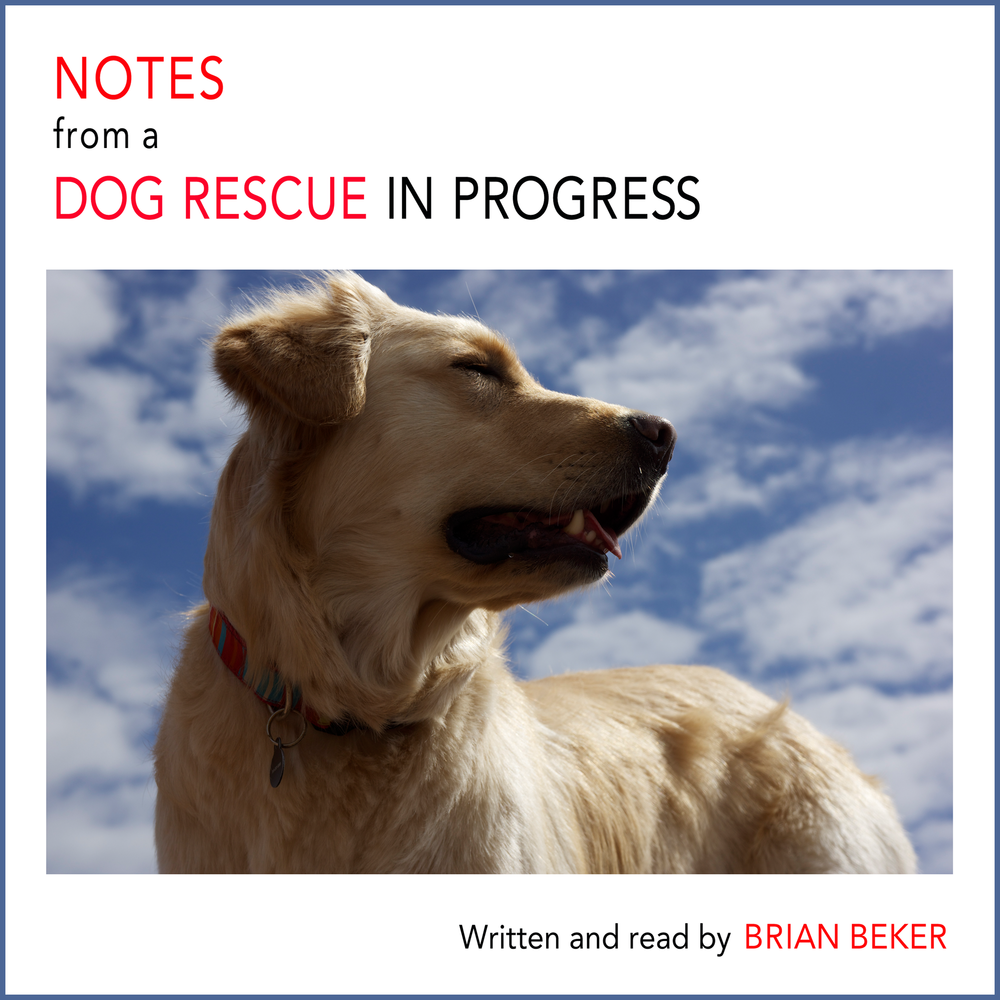 Audible_Notes_Cover.png