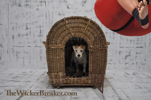 Antique_Wicker_Dog_Kennel_With_as301a043b.jpg
