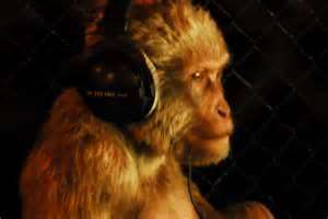 headphone monkey.jpg