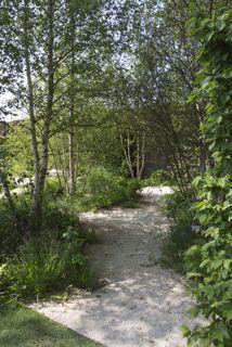 Een gouden medaille voor deze tuin van The Daily Telegraph.