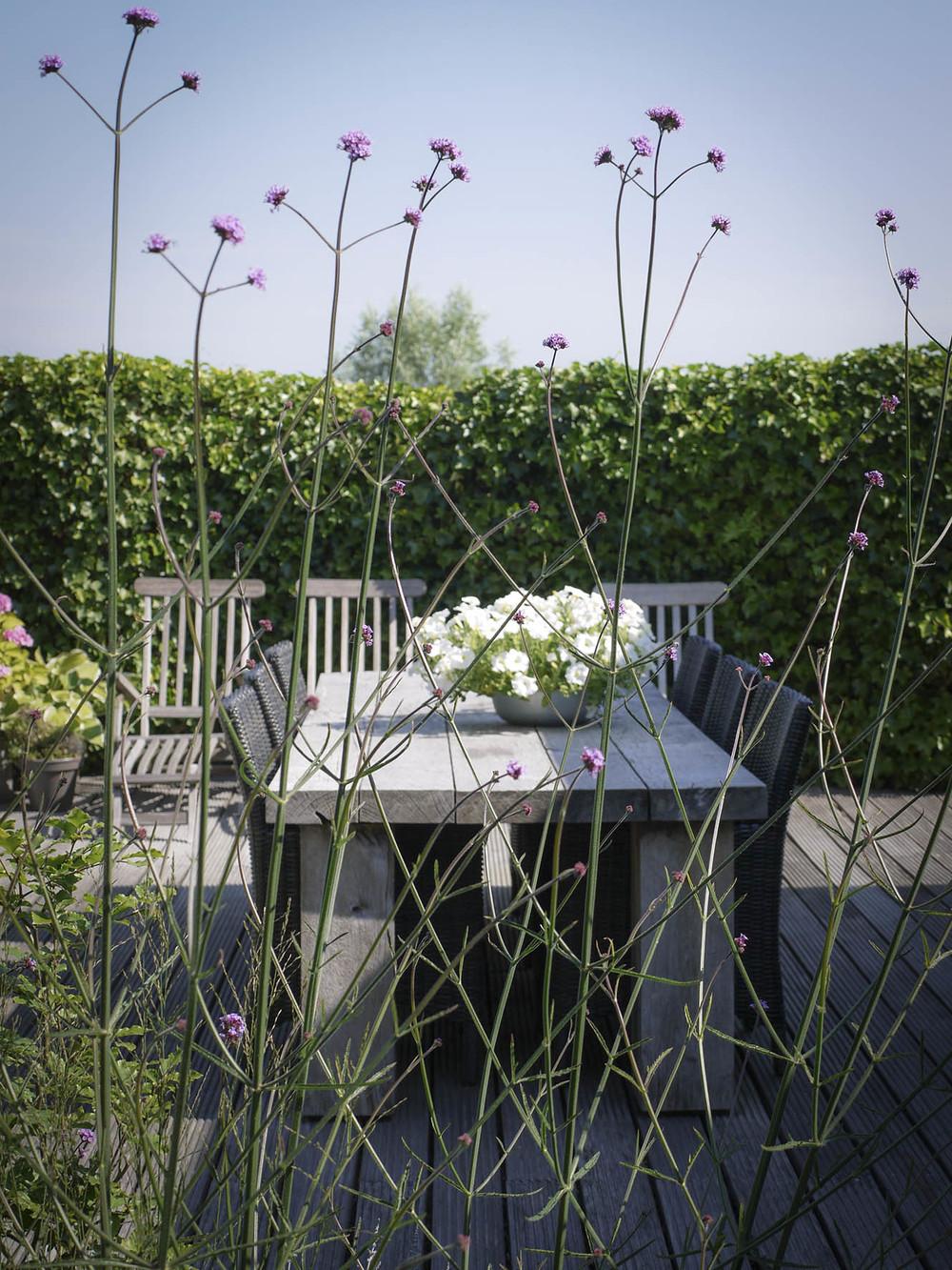 Moderne tuinontwerp met houten tafel