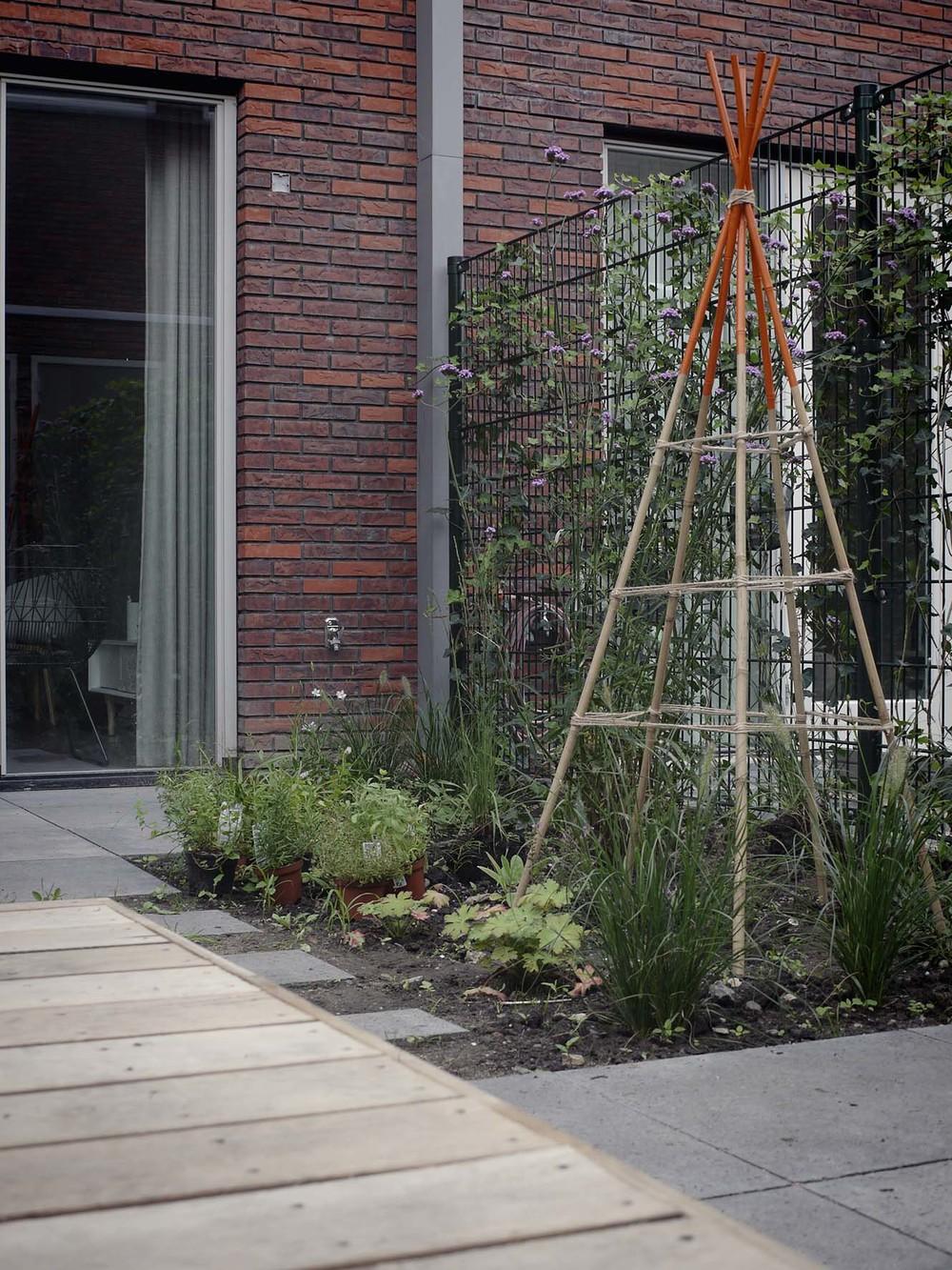 tuinontwerp moderne stadstuin met kruiden