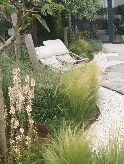 Tuinontwerper natuurlijke tuin Amsterdam
