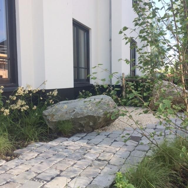 tuinontwerp natuurlijke voortuin