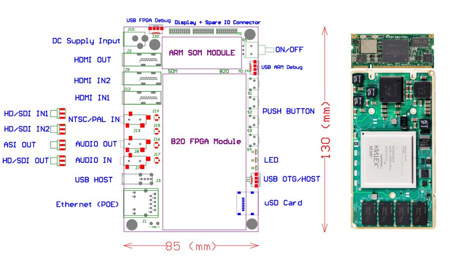 C10 Module