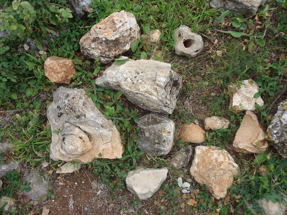 ...and a collection of stones just lying around!